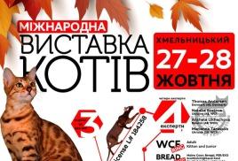 Мы приняли участие в международной выставке кошек 27-28 октября 2018 года в г. Хмельницкий, Украина