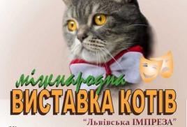 Наш кот  ИНТЕР ЧЕМПИОН WCF!!!