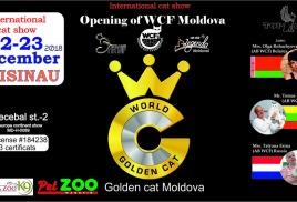 Мы приняли участие в первой международной выставке WCF в Молдове Golden Cat Moldova 22-23 декабря 2018 г